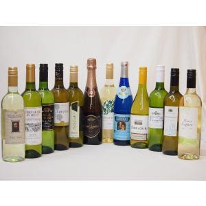 ワインセット 特選ドンペリに勝った噂のロジャー グラート +高品質ワイン10本福袋(白10本)豪華セットバレンタイン|sake-gets