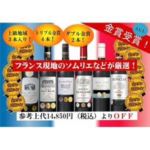ALLダブル金賞受賞 ソムリエ厳選 フランス・ボルドー産赤ワイン6本セット 750ml×6本|sake-gets