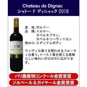 ALLダブル金賞受賞 ソムリエ厳選 フランス・ボルドー産赤ワイン6本セット 750ml×6本|sake-gets|04