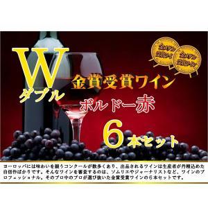 ALLダブル金賞受賞 ソムリエ厳選 フランス・ボルドー産赤ワイン6本セット 750ml×6本|sake-gets|09