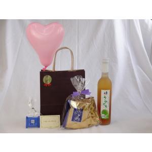 贈り物セット ギフトセット (完熟梅の味わいと日本酒のうまみをたっぷりの梅リキュール うめとろ500...