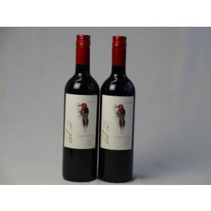 ワインセット 2本セット フルボディ赤ワイン デルスール カベルネ ソーヴィニヨン(チリ) 750ml×2本|sake-gets