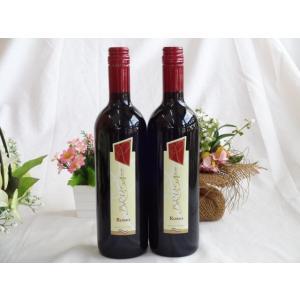 ワインセット 2本セット セレクションイタリア赤ワイン2本セット チェヴィコ ブルーサ 赤ワイン 750×2本(イタリア)|sake-gets
