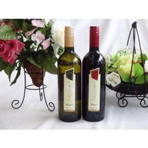 ワインセット ペアセレクションイタリア赤白ワイン2本セット チェヴィコ ブルーサ 赤白ワイン 750×2本(イタリア)バレンタイン|sake-gets