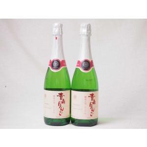 2本セット 日本のシードル青森りんご 酵母の泡 スパークリングワイン やや甘口 (山梨県)720ml...