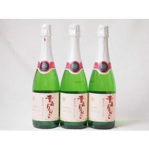 3本セット 日本のシードル 青森りんご 酵母の泡 スパークリングワイン やや甘口 (山梨県)720m...