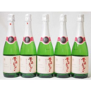 5本セット 日本のシードル 青森りんご 酵母の泡 スパークリングワイン やや甘口 (山梨県)720m...