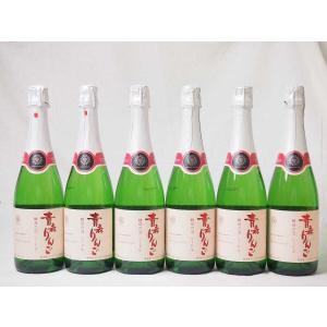 6本セット 日本のシードル 青森りんご 酵母の泡 スパークリングワイン やや甘口 (山梨県)720m...