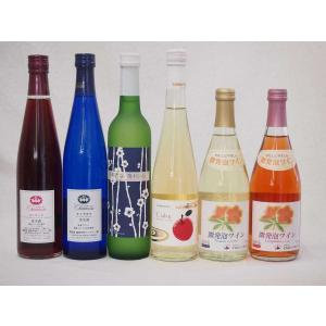 国産フルーツ甘口ワイン6本セット ナイヤガラ 京都青谷梅 丹波りんごワイン微発泡ナイヤガラ 微発砲キャンベル コンコード 500ml×6本|sake-gets