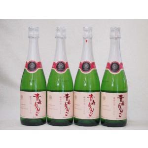 4本セット 日本のシールド 青森りんご 酵母の泡 スパークリングワイン やや甘口 (山梨県)720ml×4本 sake-gets