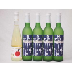 国産フルーツワイン5本セット Cider 青森弘前産りんご使用1本 梅ワイン 京都青谷 梅わいん 京都山城青谷産城州白梅わいん4本 やや甘口 丹波ワイ|sake-gets