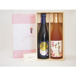 お歳暮冬の贈り物 梅酒 2本セット(高千穂酒造 高千穂梅酒 720ml 星舎蔵無添加 上等梅酒 720ml)|sake-gets