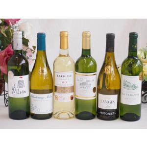 ALL金賞受賞 白ワイン6本セット フランス ソムリエ厳選 750ml×6本 sake-gets