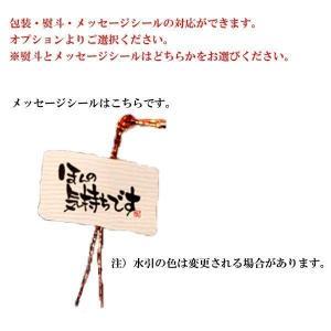父の日 ギフト 日本酒 獺祭 だっさい 純米大吟醸 磨き三割九分 遠心分離 720ml 専用箱入り|sake-komiyama|02