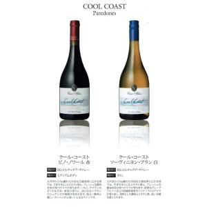 【ギフト】ヴィーニャ・カサ・シルヴァ 上位クラスのクール・コースト ピノノワール(赤)とソーヴィニヨンブラン(白)各750ml 2本セット|sake-nishida
