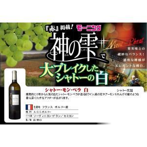 ボルドー 果実味のバランスが秀逸な白 シャトー・モン・ペラ 白 750ml フランス 辛口 sake-nishida