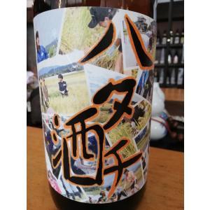 ハタチ酒  純米原酒  1800ml   sake-yabuki