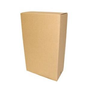 配送専用箱 一升瓶2本用 sakeasanoya