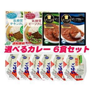 (送料無料)ハチ食品 カレー ライス セット (カレーは選べます)6食分|sakedepotcom