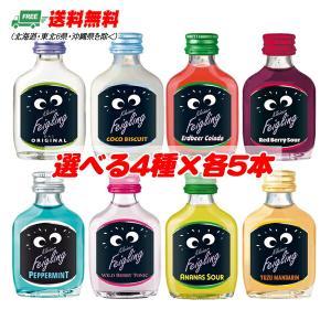 送料無料 クライナー ファイグリング 瓶 4種アソートパック 20ml × 各5本 計20本  Kleiner Feigling|sakedepotcom
