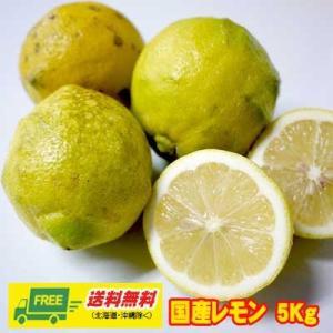 数量限定特売中 広島県産 レモン 5kg入 ワックス不使用 (送料無料)|sakedepotcom