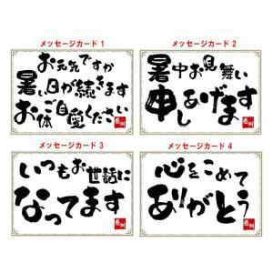 旭酒造 獺祭(だっさい) 純米大吟醸 磨き二割三分 720ml デラックス箱|sakedepotcom|02