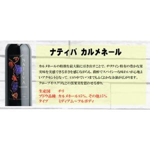 【送料無料】泡・赤・白 全部入ったパーティセット 安い! 6本セット|sakedepotcom|04