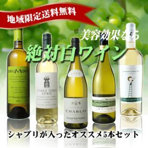 厳選した白ワイン5本セット (女性にうれしい美容効果!送料無料)|sakedepotcom