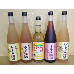 お買い得!レモン梅酒 ゆず梅酒 パインアメサワーの素 いちご梅酒 パイナップル梅酒 720ml 中野BC|sakehonpotauemon