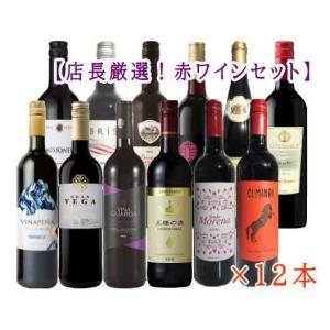 [ワイン]送料無料★第25弾 店長厳選スぺシャル赤ワイン12本セット 750ml×12本(赤ワイン12種)