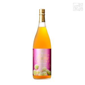 アロマ梅酒 12度 1800ml 山元酒造 梅酒|sakenochawanya
