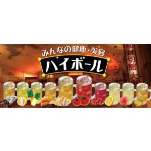 サンビネガー マカ・にんにくスッポン酢 500ml 12本セット 瓶  業務用 割り材 希釈用|sakenochawanya|03