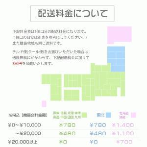 【送料無料】せいちゃんの手作りぽん酢 ぽんたま500ml×6本|sakenochawanya|03