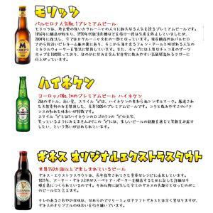 海外ビール飲み比べ6本セットD ヨーロッパビール 6ヵ国飲み比べ 輸入ビール 送料無料|sakenochawanya|04