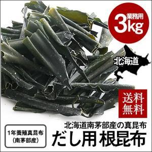 業務用 根昆布(真昆布) (3kg) / だし昆布 だし用 北海道 白口浜 大容量|sakenosakana