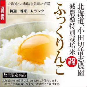 小田切清志農園の ふっくりんこ 10kg (特別栽培米/北海道産) 29年産 新米|sakenosakana