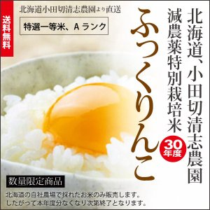 小田切清志農園の ふっくりんこ 20kg (特別栽培米/北海道産) 29年産 新米|sakenosakana