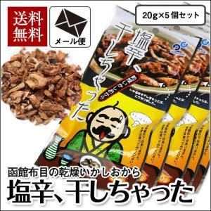 (メール便) 塩辛、干しちゃった 20g×5袋セット / 布目 北海道 いか お試し 送料無料|sakenosakana
