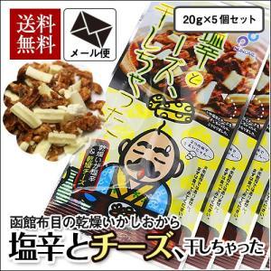 (メール便) 塩辛とチーズ、干しちゃった 20g×5袋セット / 布目 北海道 いか お試し 送料無料|sakenosakana