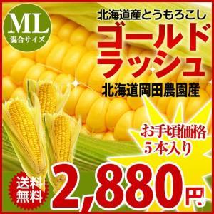 北海道産 朝採れとうもろこし ゴールドラッシュ(一番果) ML混合×5本セット sakenosakana
