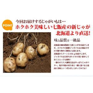 北海道産 じゃがいも メークイン 10kg (MLサイズ)/ 岡田農園 送料無料|sakenosakana|02