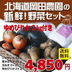北海道米・野菜セット(4種/計10kg) 栗かぼちゃ/玉ねぎ/メークイン/ゆめぴりか|sakenosakana