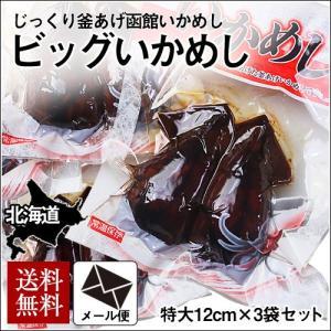 (メール便) 北海道函館 ビッグいかめし 2尾入り×3個セット(大サイズ) / 北海道 いか飯 お試し 送料無料|sakenosakana