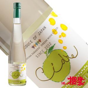 シードル ふくしま農家の夢ワイン グリーンシードル 500ml シードル 福島県 二本松市 ふくしまプライド。体感キャンペーン(お酒/飲料)|sakenosakuraya