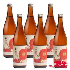 料理酒 こんにちは料理酒 まとめ買い 720ml ×6本 日本酒 大木代吉 大木代吉本店 福島 ふくしまプライド。体感キャンペーン(その他)|sakenosakuraya