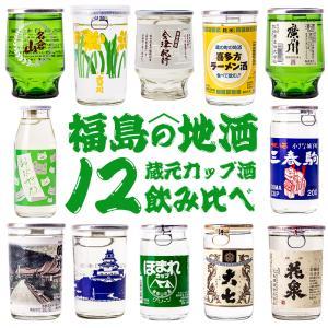 【在庫入替の為】お買い得 訳あり 厳選12蔵元 セットB カップ酒 12本 飲み比べ ワンカップ 日本酒 sakenosakuraya