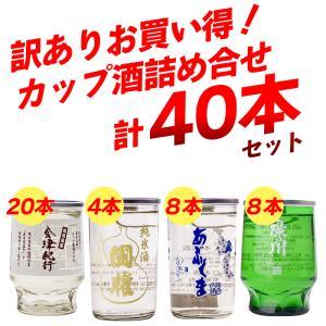 【在庫入替の為】お買い得 訳あり カップ酒 詰め合わせ 40本 飲み比べ ワンカップ 日本酒 福島 sakenosakuraya