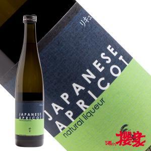 自然郷 梅酒 500ml リキュール 大木大吉本店 福島 地酒|sakenosakuraya