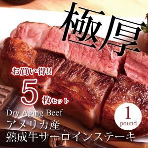 牛肉 ギフト ステーキ サーロイン 贈答用 牛肉 1ポンド  5枚セット!! 熟成肉 卒業 入学 お祝い|saku2
