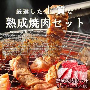 焼肉BBQセット  贈答用 あすつく熟成肉 3〜4人前 黒毛カルビ タレ漬けハラミ ランプ タレ漬け上ミノ 豚トロ 国産手羽先 900g|saku2
